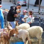 kids with farm snimals