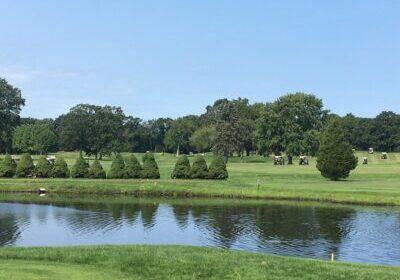 Golf carts across the pond